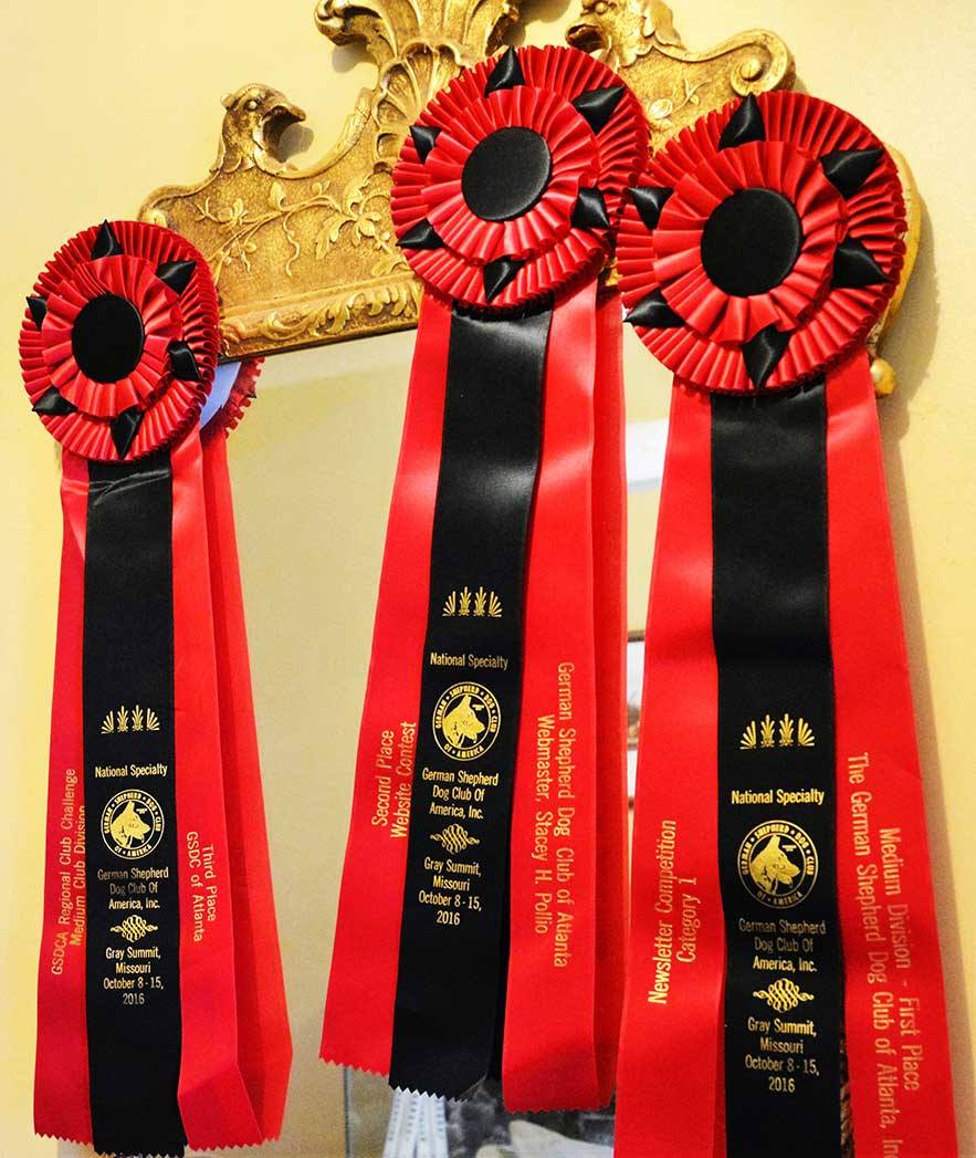 The Guardian First Place Awards Ribbon