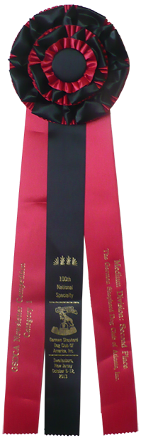The Guardian 2nd place Awards Ribbon