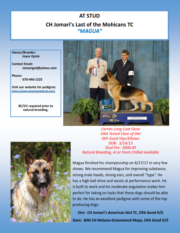 information on a german shepard dog called Magua